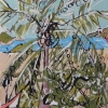 The Palm Trees of Sayulita